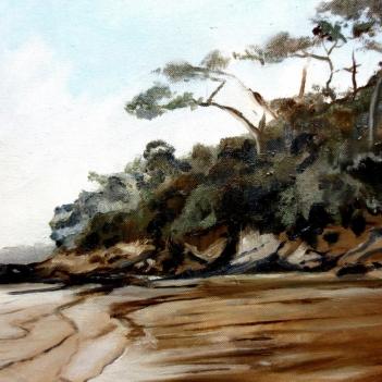 Point Chevalier Beach