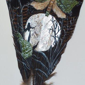 Puriri Moth in the Moonshine