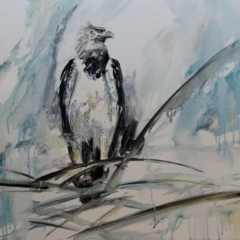 36. Martial Eagle