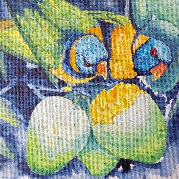 4.Lorikeet in the Mangoes