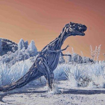 Driftwood Dino