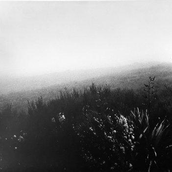Morning Fog, Tongariro
