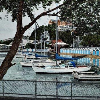 Morning View Port Nicholson