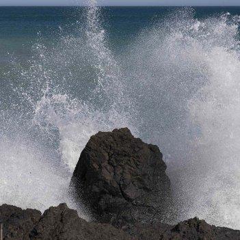 Palliser Wave