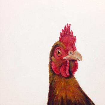 """""""Rosie - Just Because"""" (Chicken)"""