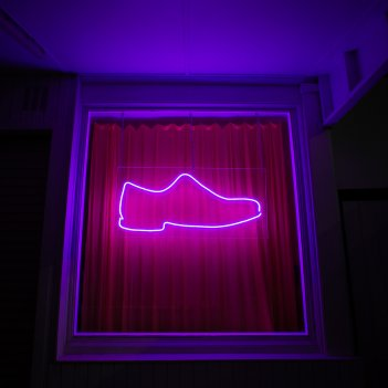 The Pink Shoe
