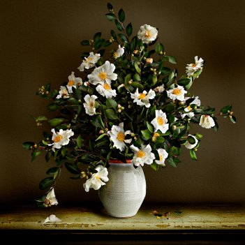 CAMELLIA VASE LIMITED EDITION of 15