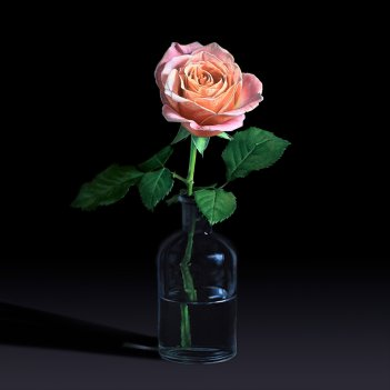 Rose in Lag Bottle