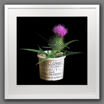 Arthritis is a prickly wee Beastie  - framed print