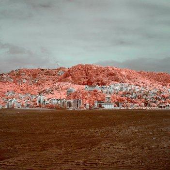 Wellington Harbour in Infrared