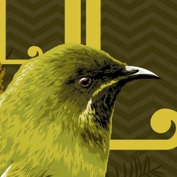 BELLBIRD detail