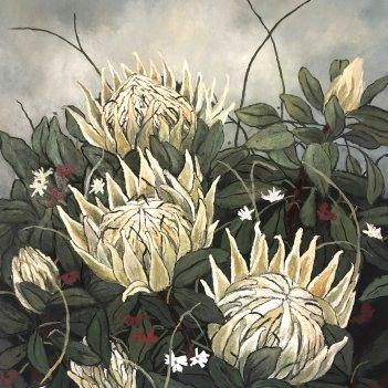 "'Wild Protea"""